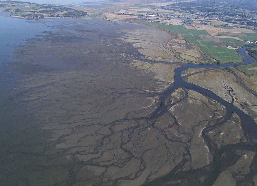 Sediment settles in Port Susan Bay. Photo courtesy of the state Department of Ecology.