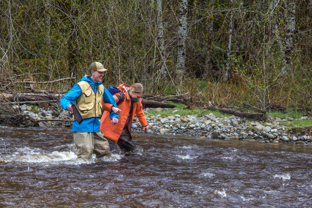 Nature Conservancy ecologists Ryan Haugo, left, and Emily Howe wade in the Hoh River. Photo by Joel Rogers.