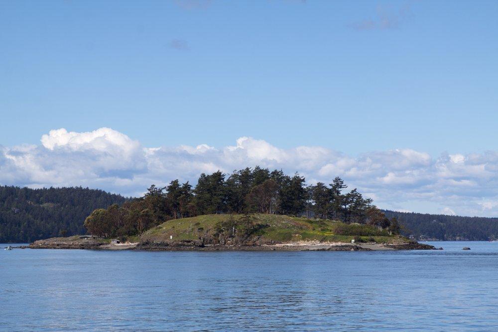 Yellow Island in spring. Photo ©Sean Galvin.