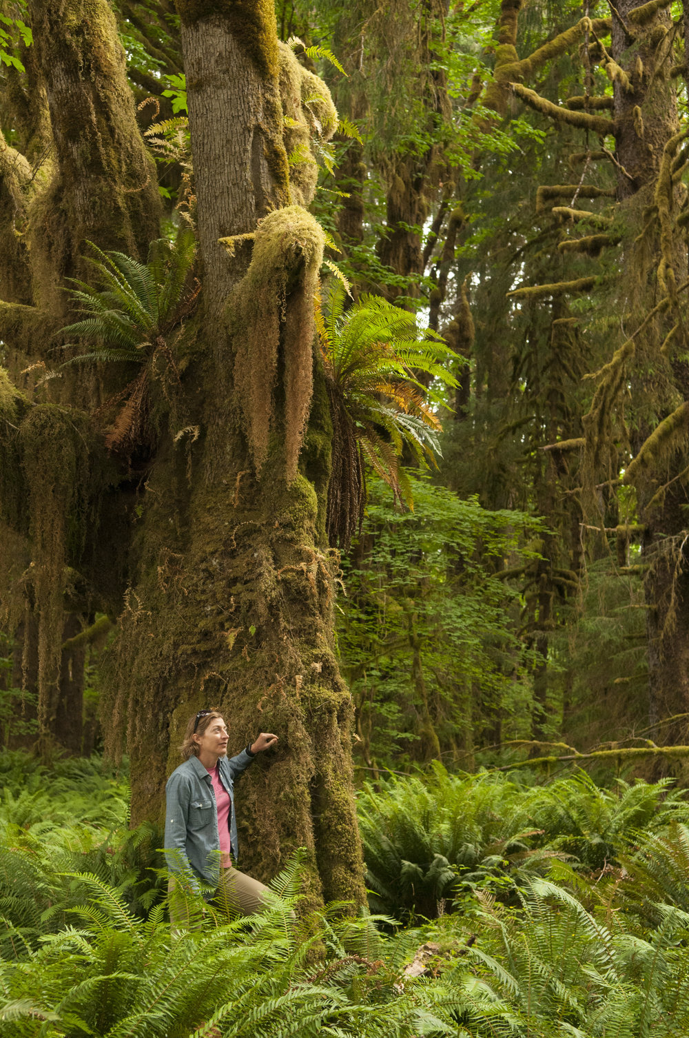 Melissa Garvey exploring in the Hoh Rainforest. Photo by Nikolaj Lasbo/TNC