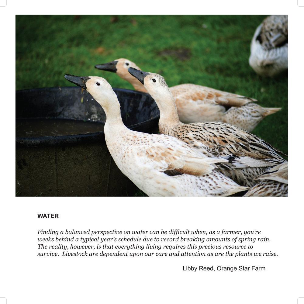 Libby Water bl.jpg