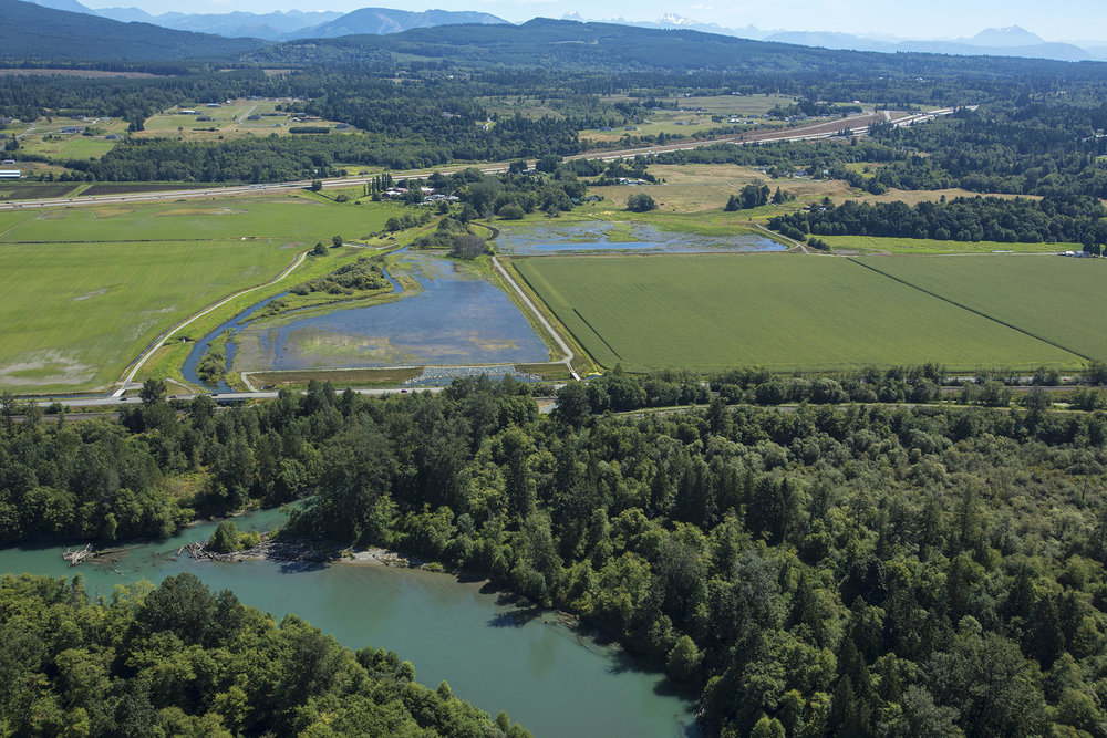Aerial view of the Fisher Slough restoration project. Photo by Marlin Greene/One Earth Images.
