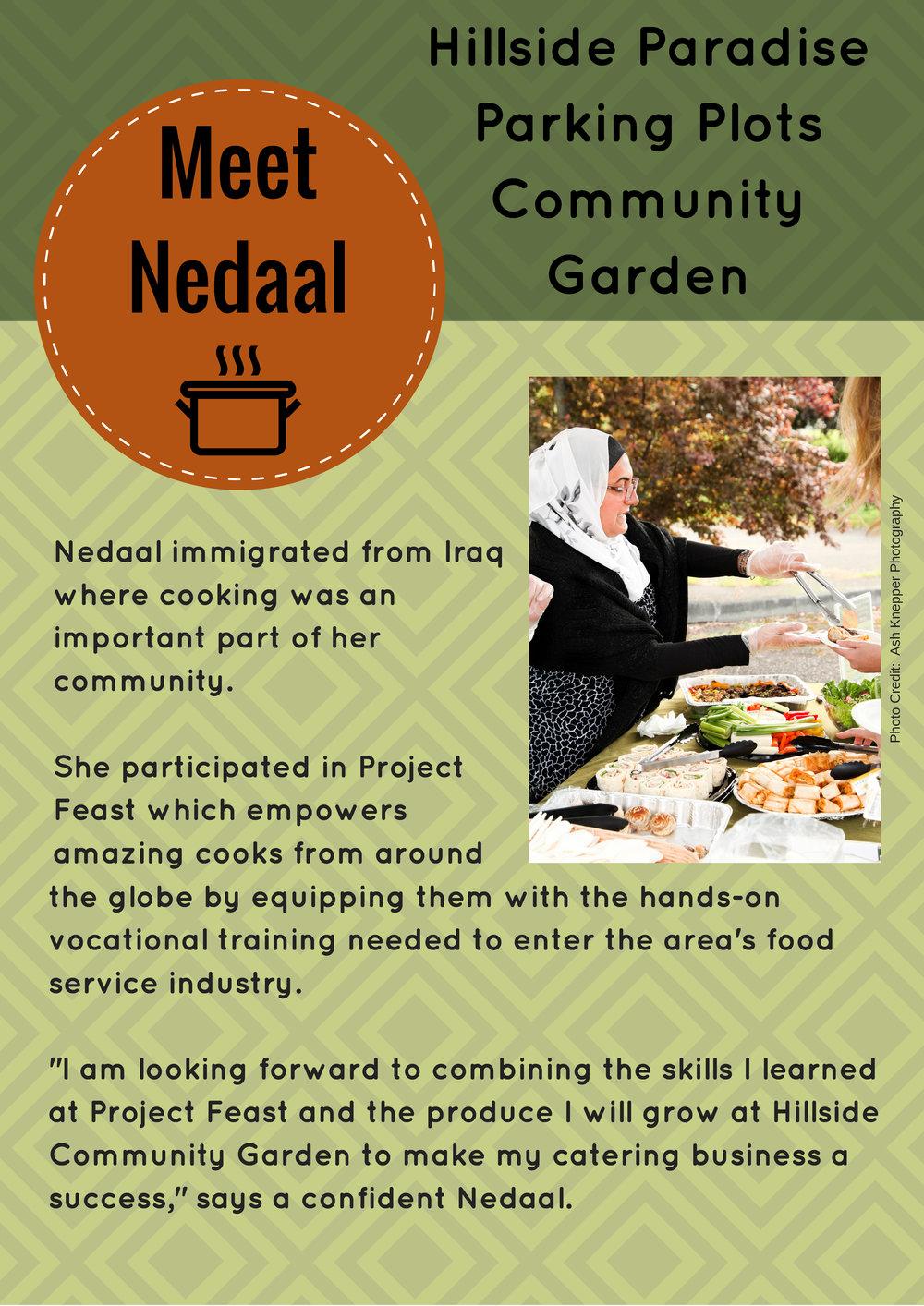 Meet Nedaal.jpg