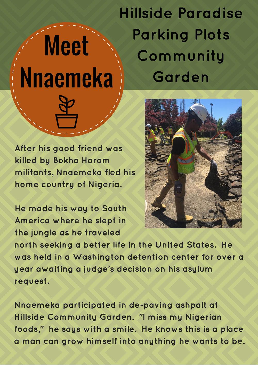 Meet Nnaemeka.jpg