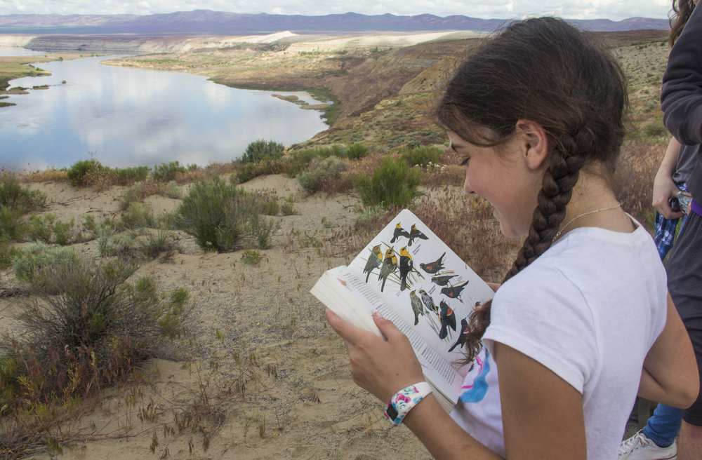 Cyndal Leaumont studies a bird guide as she overlooks the White Bluffs area of the Hanford Reach National Monument. Photo by Joel Rogers.