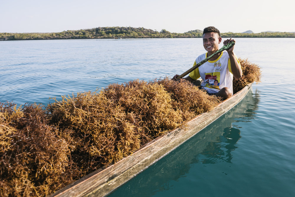 Aboulah Hatir farming seaweed on his boat to Mulutseribu Seaweed Farms. The Nature Conservancy has supported these livelihood alternatives that bring new sources of income and take pressure off local fisheries. Photo © Kevin Arnold