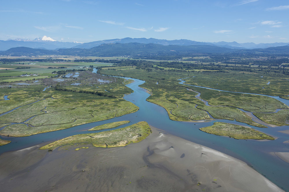 Aerial view of the Skagit River Delta where restoration projects have included Fisher Slough, Livingston Bay, and Fir Island Farm. Photo by Marlin Greene/One Earth Images.