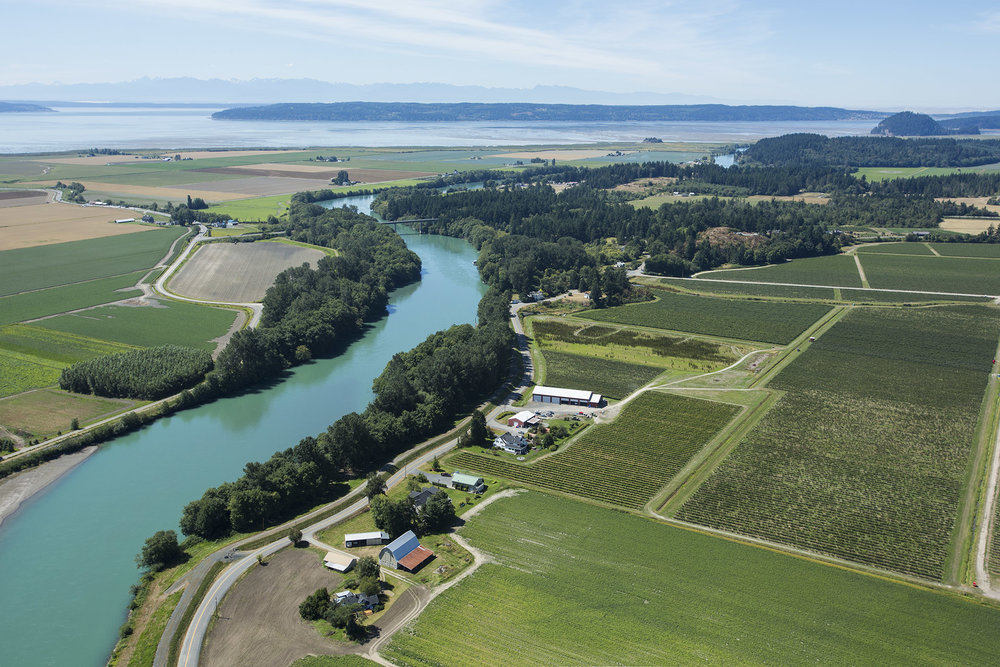Aerial view of the Skagit River Delta. Photo © Marlin Greene / One Earth Images.