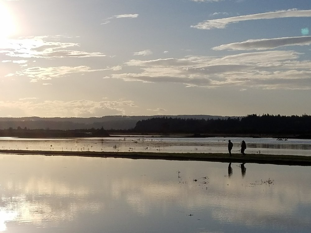 Late in the day after a sunny tour of the estuary-restoration project in the Stillaguamish. Photo © Jason Griffith/Stillaguamish Tribe