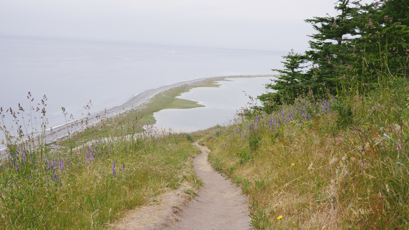 View of Perego's Lagoon and Admiralty Inlet from the Loop Trail at Ebey's Landing, Tracy's favorite Washington preserve. Photo by Don Macanlalay.