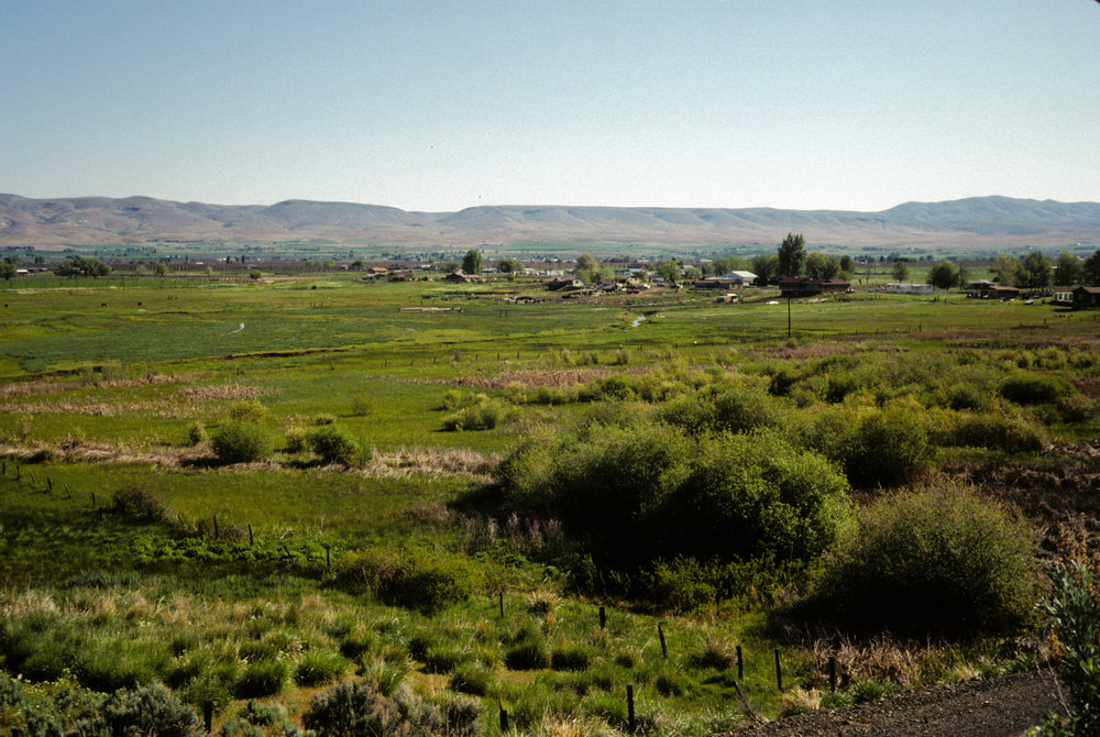 Moxee Bog, pictured here in 1984, sits amid agriculture and public lands in the arid valleys near Yakima, Washington. Photo by the Nature Conservancy.