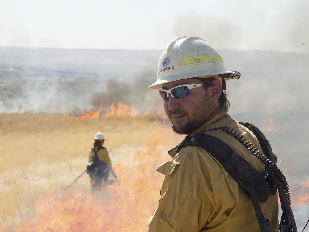 Jordan Tsubota , on a controlled burn on McCartney Creek preserve as part of Cascadia TREX Oct. 5 2017. Photo by Chris Brandon.