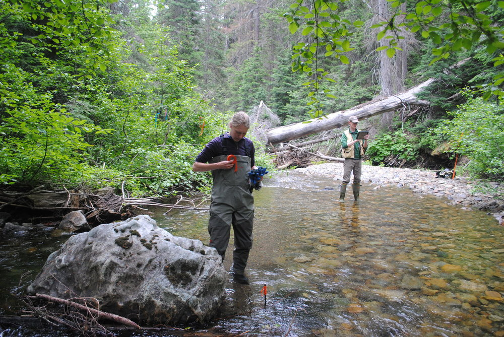 Stream temperature monitoring is part of the habitat restoration plan established by Plum Creek, the former owner of these TNC properties in the Central Cascades. Zoe van Duivenbode / The Nature Conservancy.