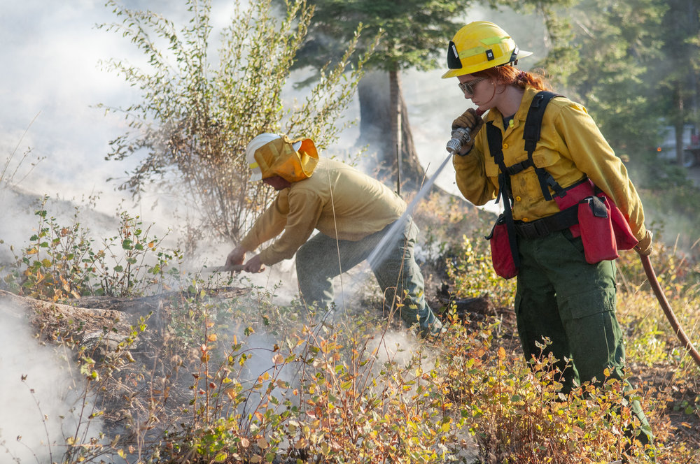 Initiative 1631 will help put a damper on forest fires with more thinning, prescribed burning and other management tactics that make forests more resilient to fire. © Nikolaj Lasbo / TNC