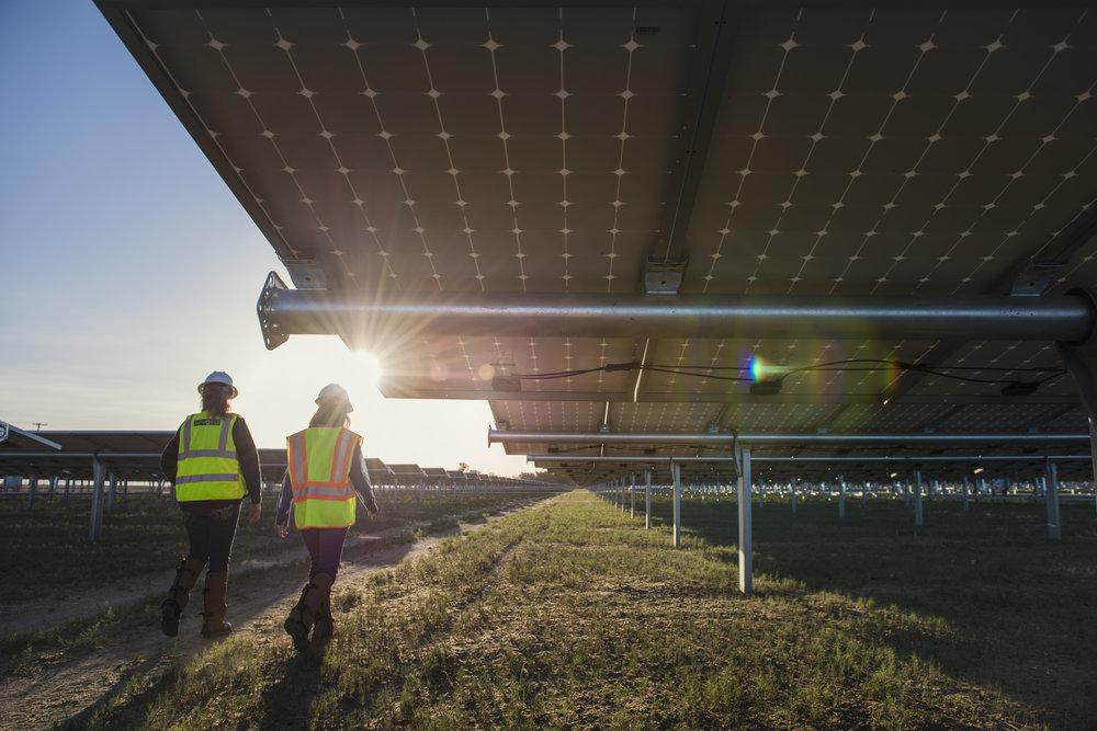 A solar array. © Dave Lauridsen