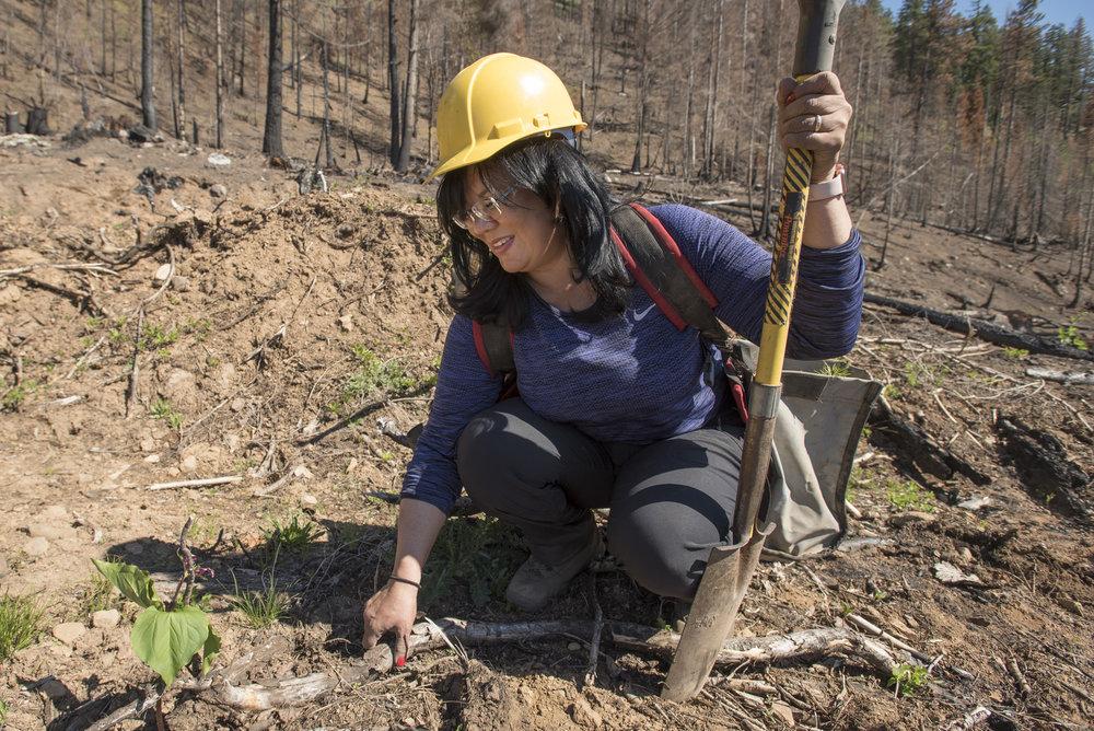 Jenette Ramos prepares the ground before planting a tree sapling. © Hannah Letinich