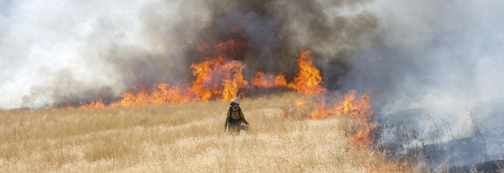 Kara Karboski, lead organizer for the TREX prescribed fire training on a controlled burn near McCartney Creek as part of Cascadia TREX Oct. 5, 2017. Photo by Chris Brandon.