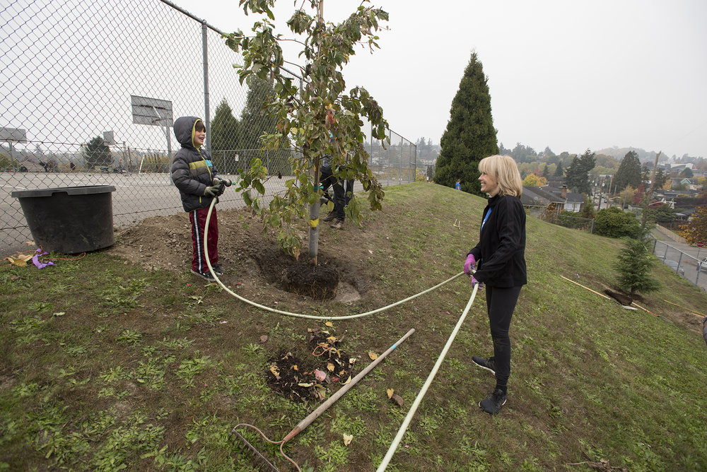 Planting trees at Hawthorne Elementary in Seattle in October 2018. © Hannah Letinich