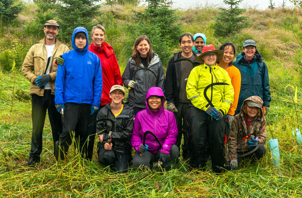 Volunteers attack reed canary grass in Fisher Slough Nature Preserve. Emily Crabill in the black coat and brown hat.