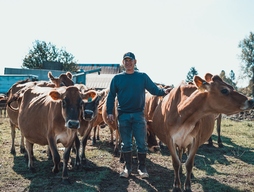 Paul Fantello with his Jersey cows. Photo by Courtney Baxter / TNC.