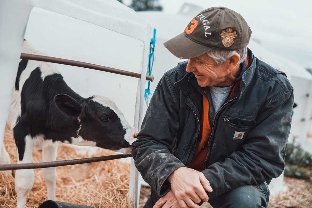 Ben with one of his calves. Photo by Courtney Baxter / TNC