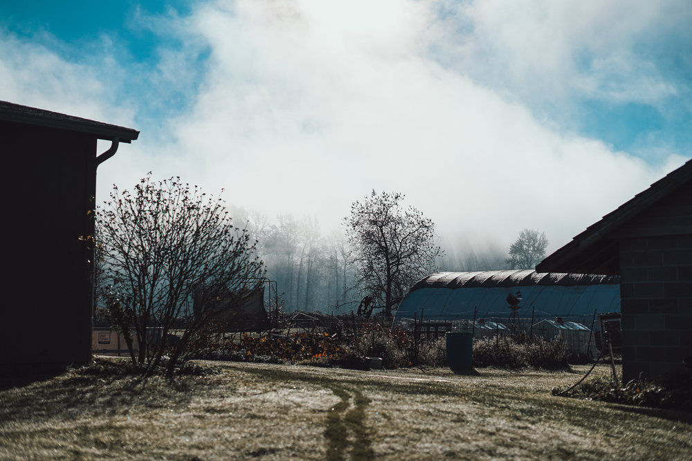 Groeneveld Farm on a foggy morning. Photo by Courtney Baxter / TNC