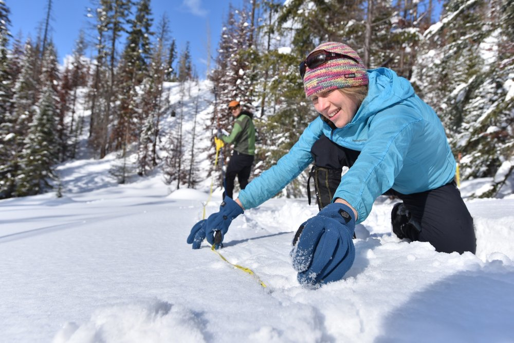 Emily Howe takes one of several measurements we're logging at snowpack monitoring sites in the Central Cascades. Photo by Hannah Letinich.