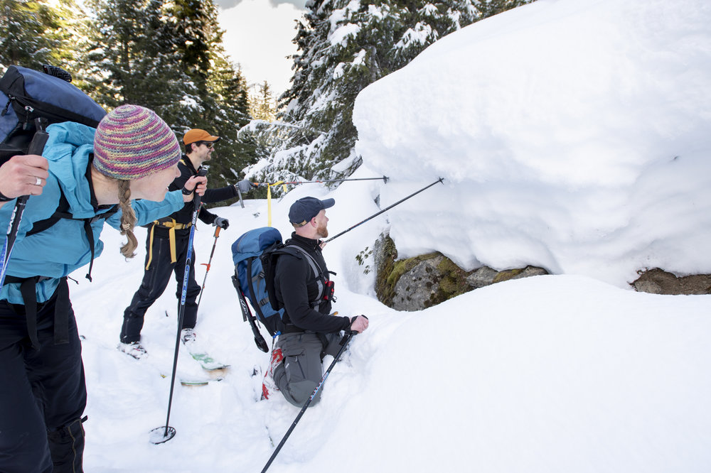 Forest ecologist Michael Case inspects snowpack near a research site on Sasse Ridge. Photo by Hannah Letinich.