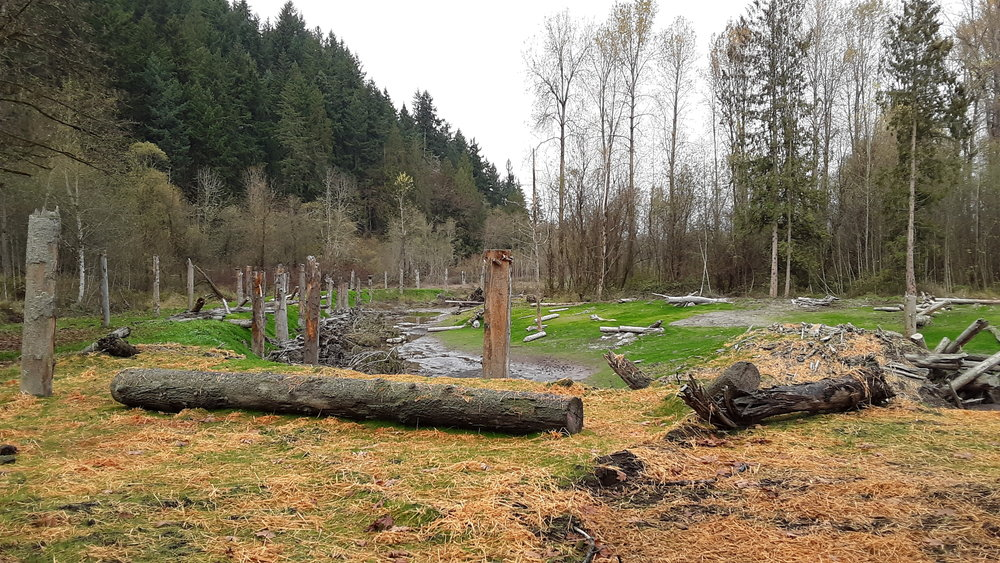 Newly built side channel along the Puyallup River. Taken at the Orting Floodplains by Design project during a workshop in Puyallup. Photo by Jenny Baker / The Nature Conservancy.