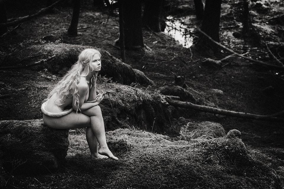 Huldreskogen - Et utendørs opplevelses konsept hvor du kan blir kjent med de underjordiske..