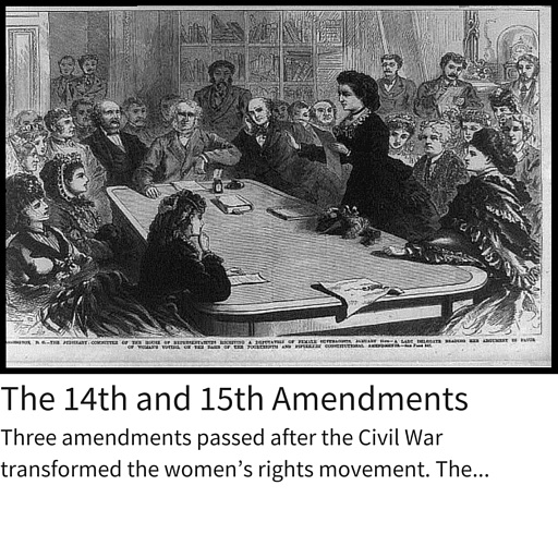 14th and 15th Amendment.jpg