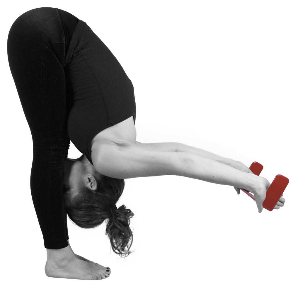 Forward Fold with a Shoulder Opener-Forward Bend-Uttanasana.png