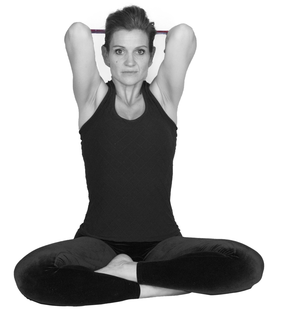 Seated Feather of the Peacock Pose Prep-Pincha Mayurasana Prep.png