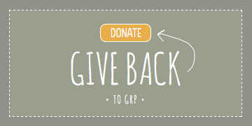 give-back.png