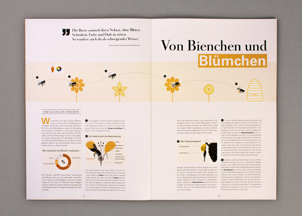 Bachelor_Magazin_11.jpg