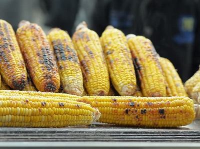 Burnished gold of roasted corn.