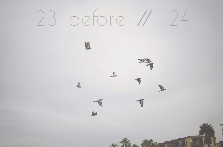 _DSC7357