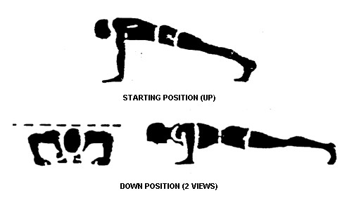 the-push-up