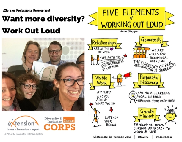 a framework for pursuing diversity in the Diversity metrics, measurement, and evaluation  (susan funk, president, the diversity difference, cited in a framework for building organizational inclusion, the workplace diversity network a joint project of the national conference for community & justice and cornell university ilr,  how does your organization pursue diversity.