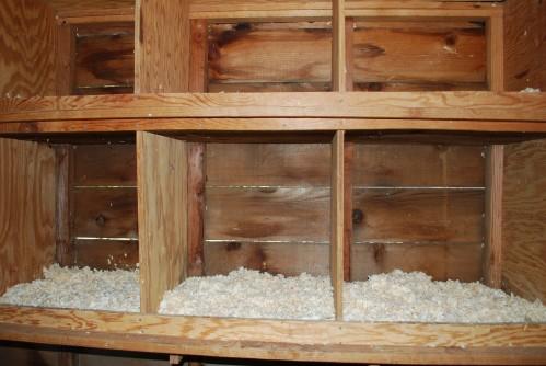 Hen Nesting Boxes
