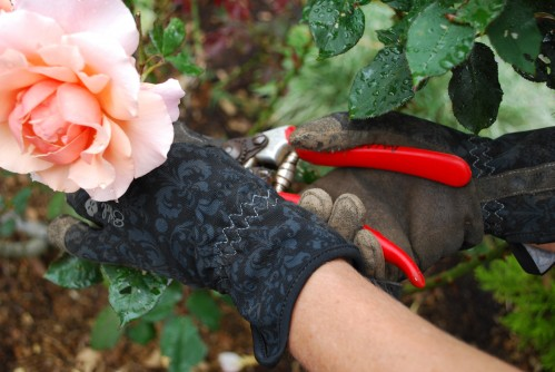 Gardening With Ethel Gloves