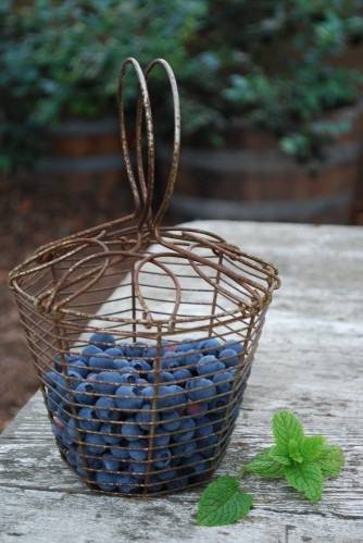 Just-Picked Blueberries In Vintage Berry Basket