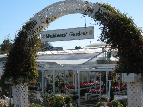 Weidner's Gardens, Encinitas, California
