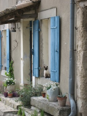 What's Not to Love About Provence?