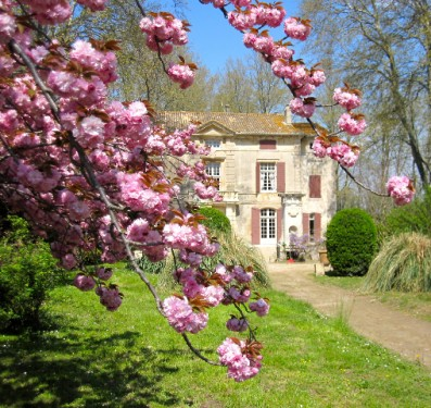 Chateau Roussan, A Secret Garden