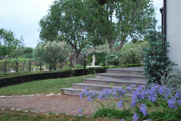 The Provence Garden