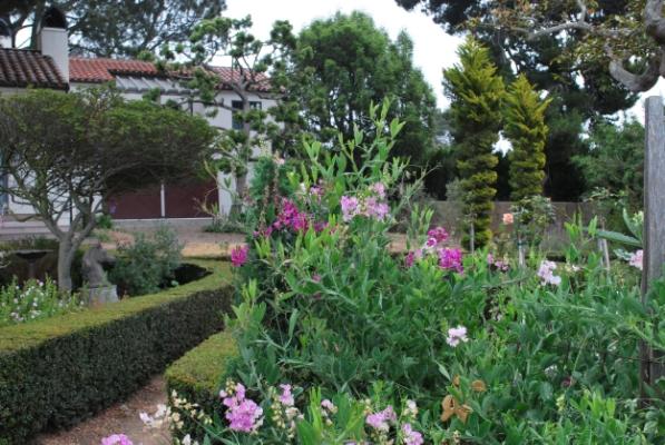 The Boxwood Garden
