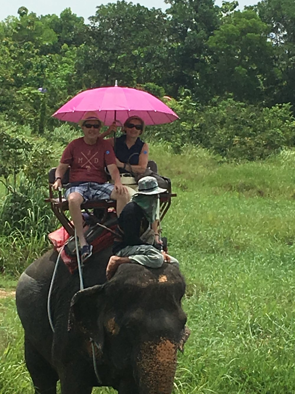 Elephant Trekking outside Phuket