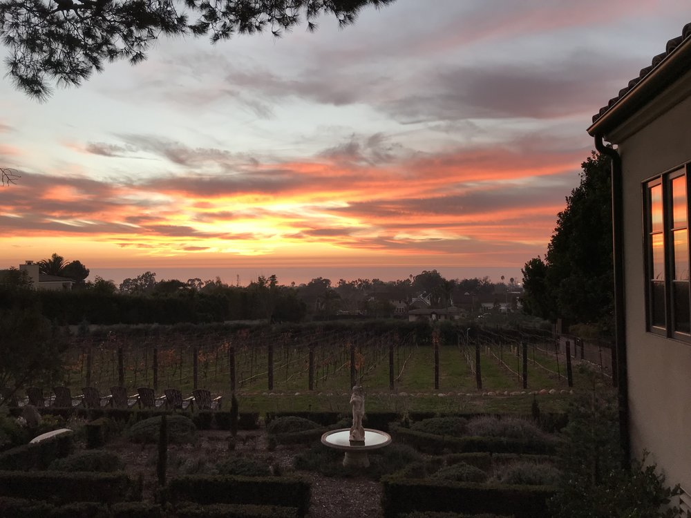Winter Sunset over Domaine de Manion