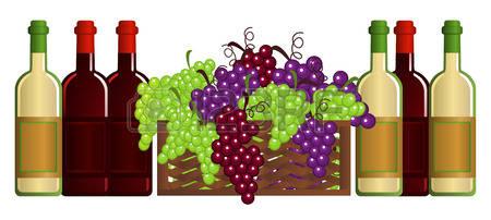wine-and-fruits 2016.jpg